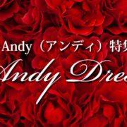 Andy(アンディ)特集